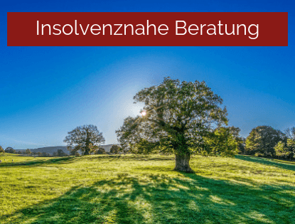 Insolvenznahe Beratung