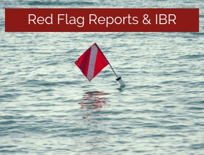 Red Flag Reports
